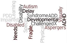 We provide advice information covering the gamut of disabilities